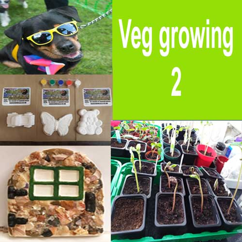 Growing Edible Plants (G2)